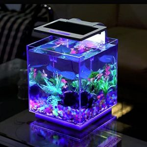 best-15-gallon-fish-tank
