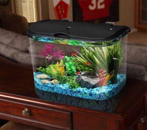 kids fish tank