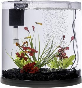 best 3 gallon fish tank 2