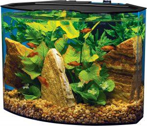 acrylic aquarium for sale