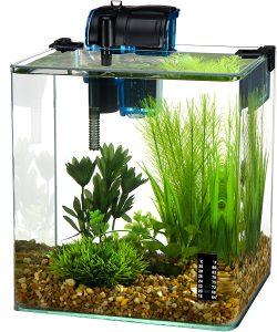 best 3 gallon fish tank 2