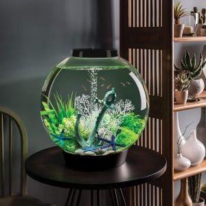 best 15 gallon fish tank