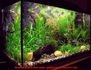 standard-glass-aquarium-tank-55-gallon