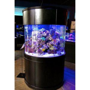 Cylinder fish tank – Cylinder aquarium