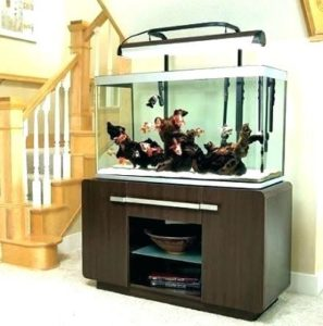 Fish Tank Stand For 10 Gallon
