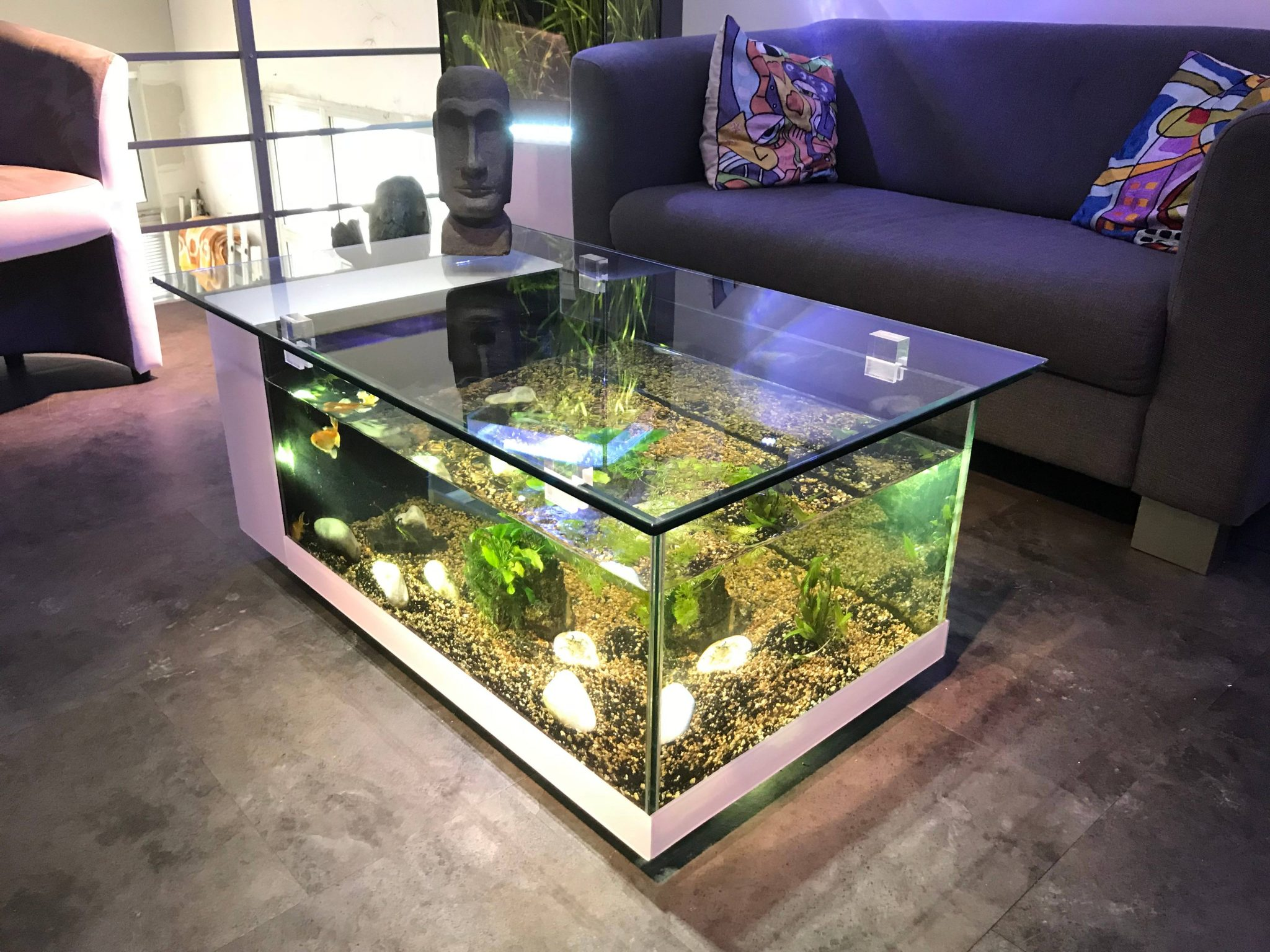 Fish Tank Coffee Table Champagne Reef