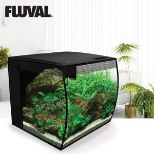 best 10 gallon fish tanks aquarium kits
