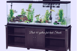 Best 40 gallon fish tank Stands
